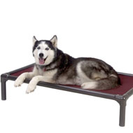 Indestructible Dog Beds - Kuranda